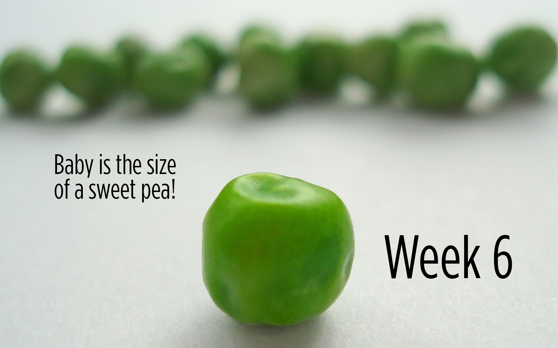 Sweet Pea Size